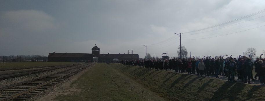 Udział parafian w Drodze Krzyżowej na terenie KLBirkenau w Brzezince.