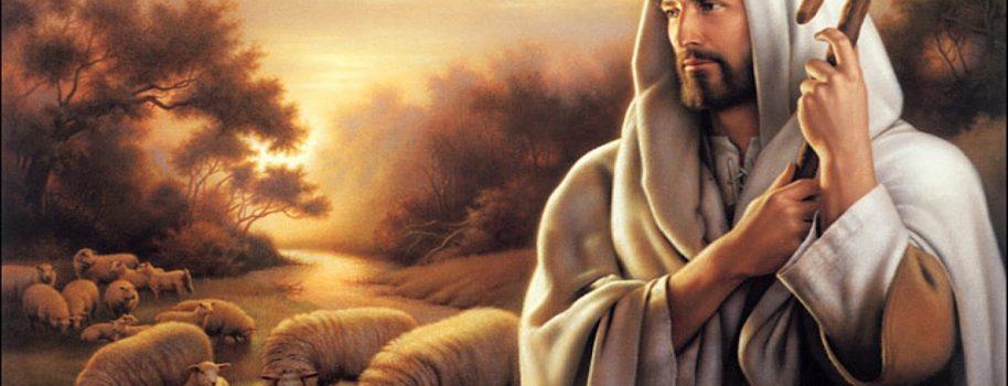 Ogłoszenia parafialne – IV Niedziela Wielkanocna.